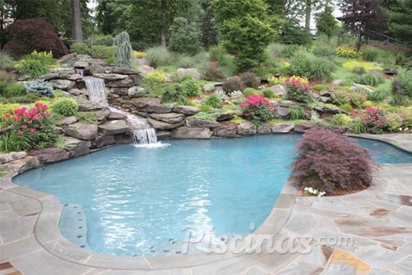 Las mejores plantas para decorar tu piscina for Plantas para piscinas