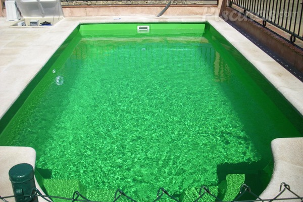 tratamiento de choque piscina algas