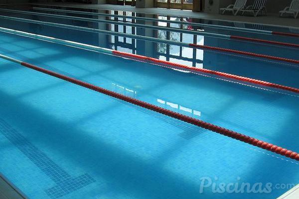 Los dise os de piscinas ol mpicas se hacen en 3d for Se hacen piscinas