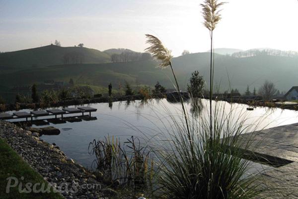 La depuración natural en piscinas ecológicas