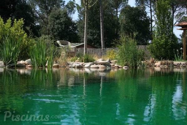 Las piscinas naturales m s bonitas de espa a for Hoteles con piscina en cuenca