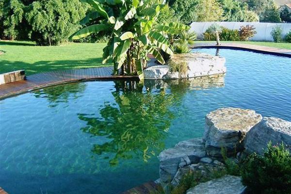C mo crear un entorno natural en tu piscina for Que piscina es mejor