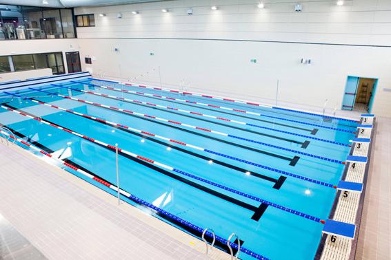 Los premios del sal n piscina barcelona 2013 gana la sostenibilidad - Piscinas de portugalete ...